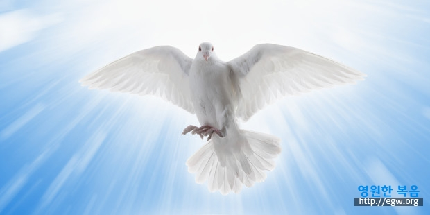web3-holy-spirit-dove-blue-sky-clouds-trinity-shutterstock.jpg